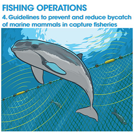 Cover page of Guidelines to prevent and reduce bycatch of marine mammals in capture fisheries