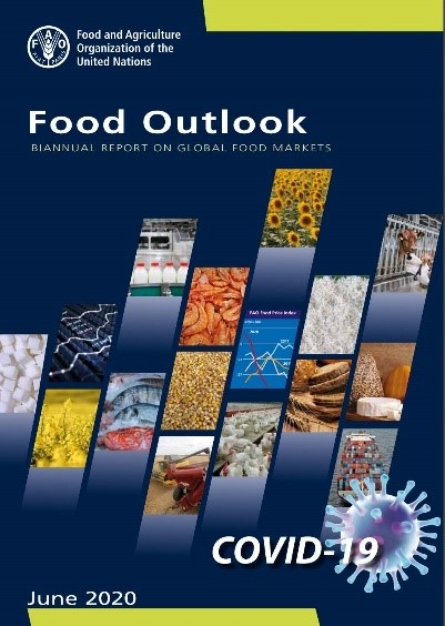 FAO Food outlook report cover