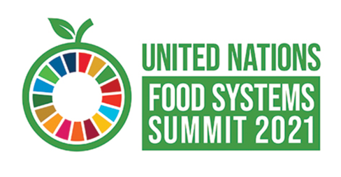 Logo for Food Systems Summit 2021