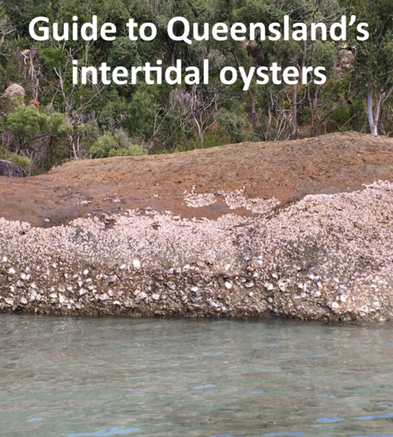 Front cover of Intertidal Oyster Guide