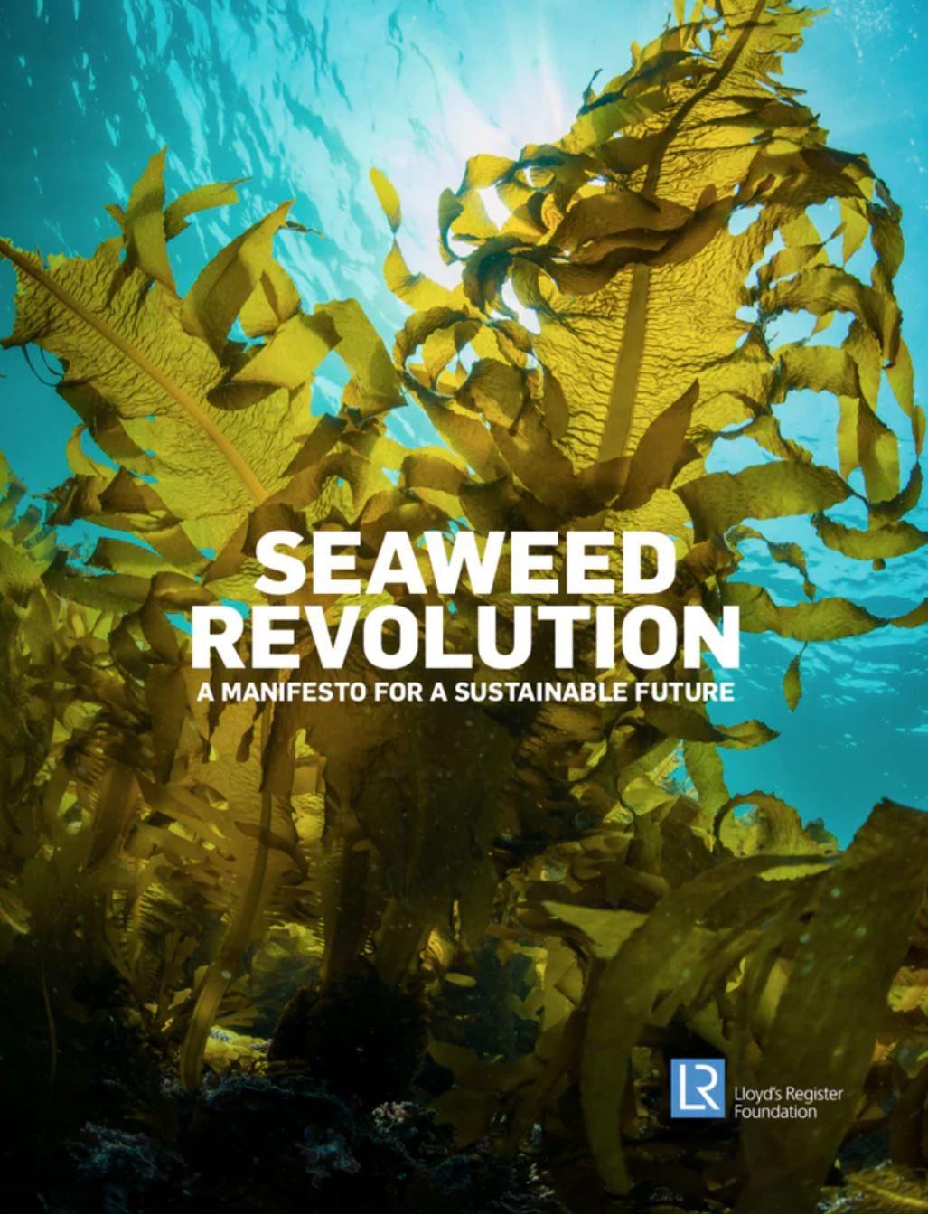 Seaweed Manifesto Report Cover