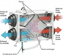 Image of ERV